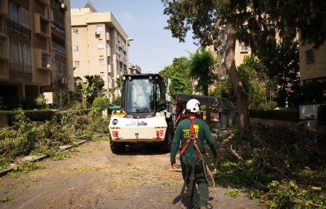 בעקבות השיח הציבורי וחשיפת הליקוים האדירים ברחבי העיר בגין מצב העצים מגבירה העירייה את עבודתה בשטח