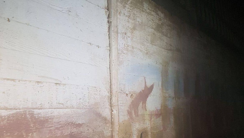 """הורים רבים מבה""""ס אשלים חוששים מאפשרות לקריסת קיר שאינו יציב ובכך מחריפים את מאבקם"""